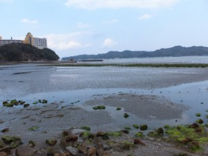 JR参宮線 池の浦シーサイド駅付近からの風景