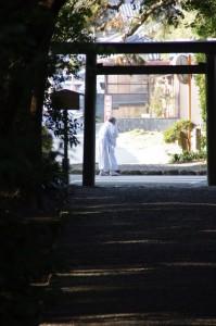 御塩殿神社参道からの風景