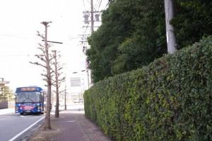 堅田神社付近(国道42号線)