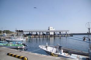 波切漁業協同組合水産物荷捌所付近(波切漁港)
