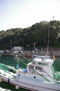 対岸の波切神社鳥居を望む(波切漁港)