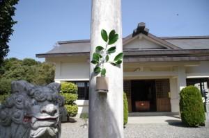 波切神社(志摩市大王町)