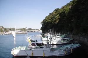 波切神社の鳥居付近(波切漁港)