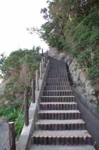 「八大龍王」の石柱付近から崎山公園へ(志摩市大王町)