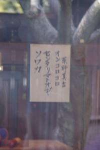 「薬師堂」に貼られた薬師真言(志摩市大王町)