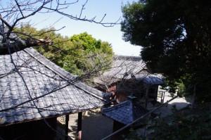 鍾霊堂付近から望む薬師堂、思案地蔵尊の屋根(志摩市大王町)