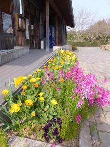創造の森横山・山小屋(横山ビジターセンター)