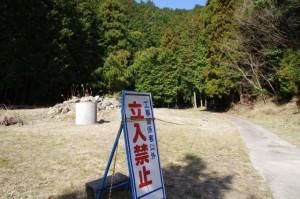 坂本棚田から「ミツマタの森」へ