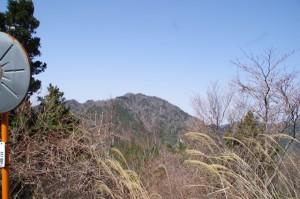 仙ヶ岳を望む(「ミツマタの森」から野登寺へ)