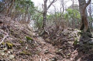 野登寺から野登山へ