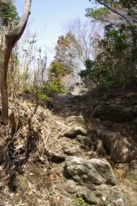 野登山の山頂付近