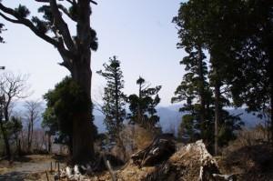 野登寺(上寺)の山門付近
