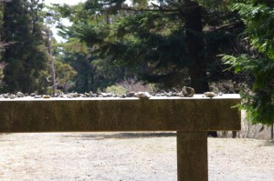野登寺から坂本棚田へ