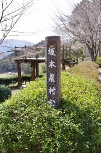 坂本農村公園(坂本棚田)