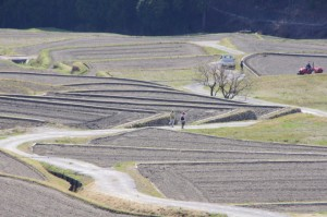 坂本農村公園展望台からの風景(坂本棚田)