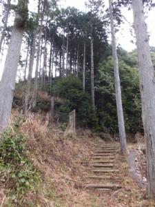 宮山の山頂へ(伊勢市横輪町)