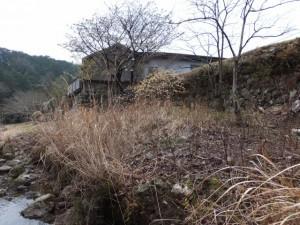 横輪川の川辺(伊勢市横輪町)