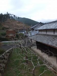 桂林寺付近から望む宮山(伊勢市横輪町)