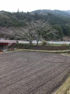 桂林寺から横輪橋へ(伊勢市横輪町)