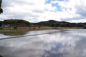 九鬼岩倉神社付近の水田(鳥羽市岩倉町)