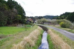 JR東海 圦先踏切から松下弓祭り会場へ