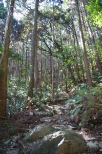 旧国束山参道、国束山(山コース)