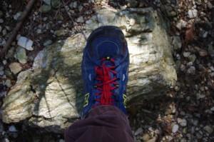 国束山 谷コースへの分岐