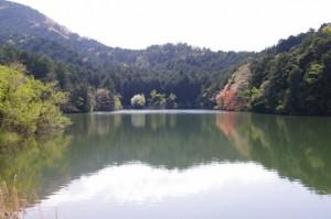 ヒジヤ池(弘法石~アスピア玉城)