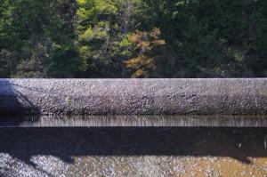 ヒジヤ池からの流れ(弘法石~アスピア玉城)