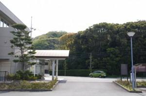 堅田神社の社叢