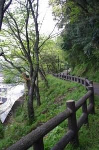 東屋・吊り橋へ(音無山園地)