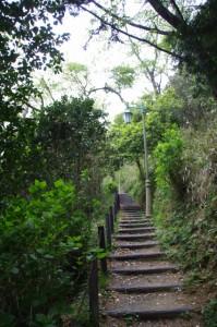 吊り橋~展望台(音無山園地)