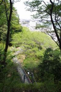 眼下に見える吊り橋(音無山園地)