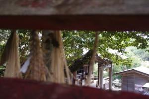 伏見稲荷社の鳥居から望む本堂(太江寺)