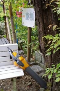 藤棚の案内板とブロワー(太江寺)
