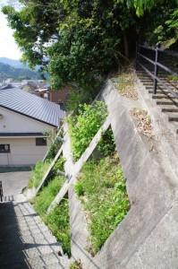 太江寺の裏山~江コミュニティセンター