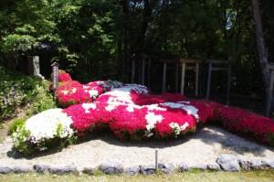 龍神庭園ののぼり龍(松尾観音寺)