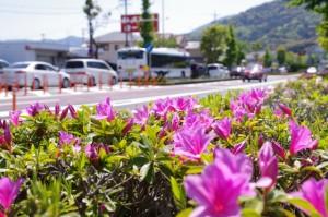 中村町交差点(国道23号線)付近