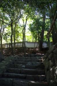 大水神社の石階から望む林崎文庫の土塀