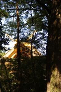 別宮遥拝所前から望む新御敷地の御正宮(内宮)