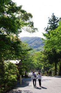 子安神社、大山祗神社付近から望む鼓ヶ岳