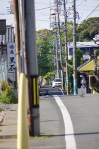 「470m 隠岡遺跡公園」の道標付近から望む倭姫命御陵