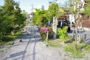 小田橋付近(古市街道)