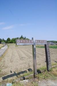 道標(分岐(1662)から於美阿志神社へ)
