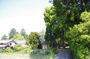 於美阿志神社 桧隈寺跡(2198)付近