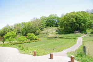 高松塚周辺地区公園の休憩所(1428)付近
