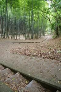 階段((4948)から岡寺(5628)へ)