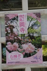 岡寺からの坂道で見つけた岡寺のポスター