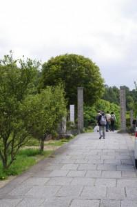 橘寺西門への参道((6733)から亀石(7187)へ)
