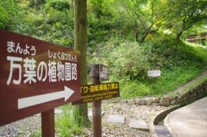 甘樫丘への登り口(2210)